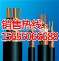 【特种计算机电缆JF46VP2/22、ZB-JF46VRP2/22耐高温计算机电【特种计算机电缆JF