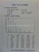 液化气二甲醚检测仪(紧凑型)GC-9860E