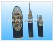 VVP、VVP22、RVVP屏蔽电力电缆