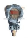 工业数显微压力变送器---PTS46V