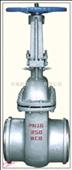 DS/Z64H铸钢水封闸阀