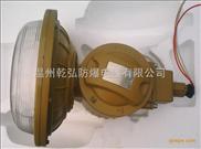 SBD1102-YQL40免维护防爆节能灯