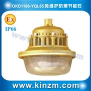 温州专业生产厂家批发SBD1106免维护防爆节能灯