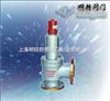 A42F/Y液化气安全阀